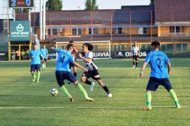 universitatea cluj-chindia